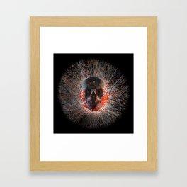 Skull Cinders Framed Art Print