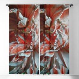 Amaryllis Portrait Blackout Curtain