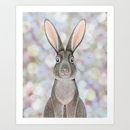 rabbit woodland animal portrait Art Print