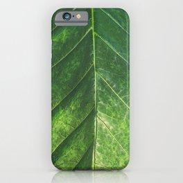 Textured Tropics iPhone Case