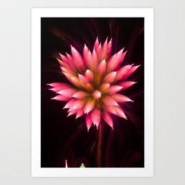 Efflorescence 2 Art Print