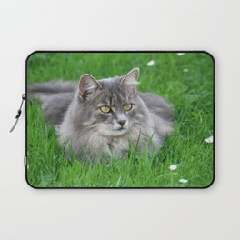 Persian cat in the grass Laptop Sleeve