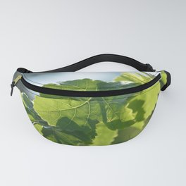 Wine and vine photography: vine leaves Fanny Pack