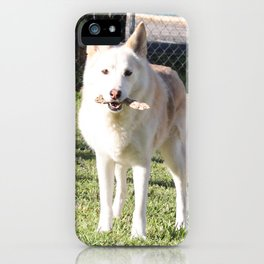 Raven 2 iPhone Case