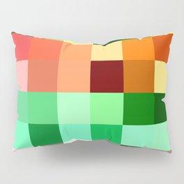 V1 Pillow Sham
