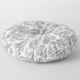 Paleontology Dream Floor Pillow
