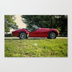 Room For Two Canvas Print