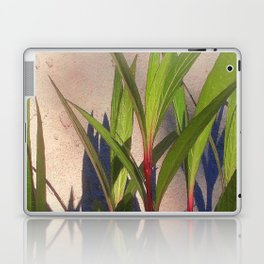 Long Green Leaves and Shadows Laptop & iPad Skin