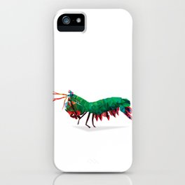 Geometric Abstract Peacock Mantis Shrimp  iPhone Case