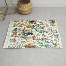 Adolphe Millot - Fleurs A - French vintage poster Rug
