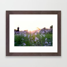 Sunset in Spring Framed Art Print