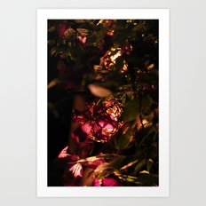 Night Blooms I Art Print