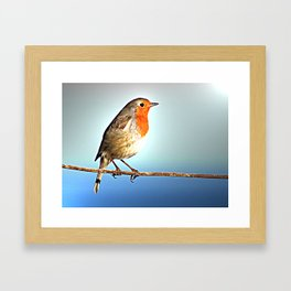 Robin Bird on Wire, Lonely Love Blue Photography Framed Art Print