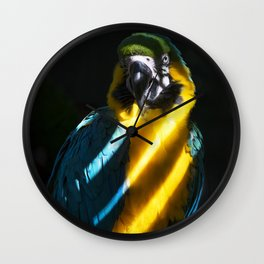 Macaw in Shadow Wall Clock