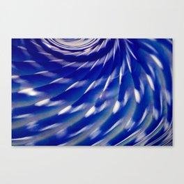 Spiraled Sea Urchin Canvas Print
