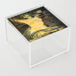Laudanum, Vintage Advertisement Collage Acrylic Box
