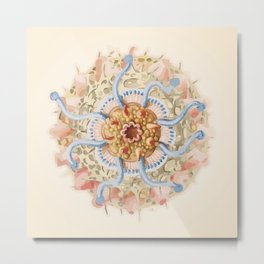 Ernst Haeckel Revisited Metal Print