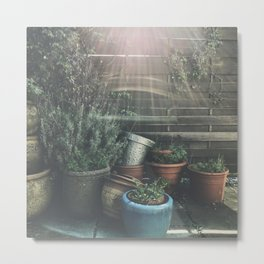 Simple Pleasures Metal Print