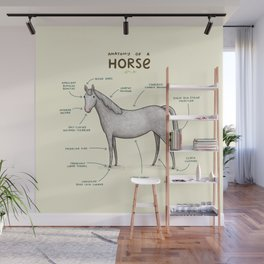 Anatomy of a Horse Wall Mural