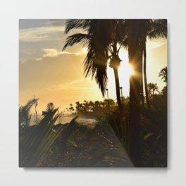 Photo 33 beach palm trees Metal Print