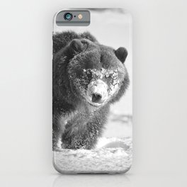 Alaskan Grizzly Bear in Snow, B & W - 3 iPhone Case