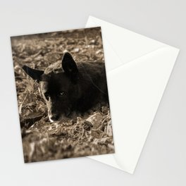 An old friend Stationery Cards