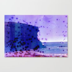 rock in the ocean Canvas Print