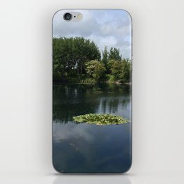secret pond iPhone Skin