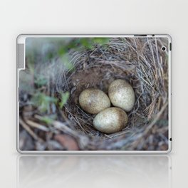 Horned lark nest and eggs - Yellowstone National Park Laptop & iPad Skin