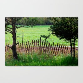 Little Fence leading to a big open field.  Canvas Print