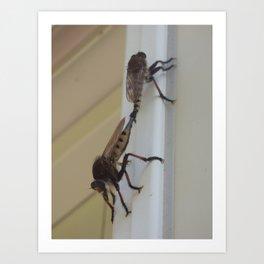 robber flies in love V Art Print