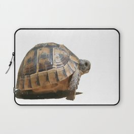 Sideview of A Walking Turkish Tortoise Isolated Laptop Sleeve