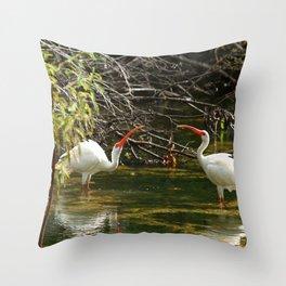 Ibis Dating Place Throw Pillow