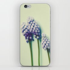 She Liked Everything in it's Place iPhone & iPod Skin