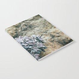 Botanical Gardens - Succulent #557 Notebook