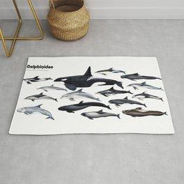 Delphinidae: Dolphin family Rug