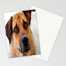 My Nose is Cold Stationery Cards