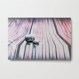 snail on the trail Metal Print