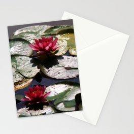 Three beauties Stationery Cards