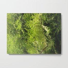 green bush Metal Print