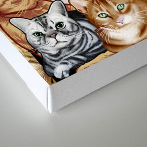 Catmina Project Canvas Print