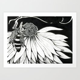Bee & Coneflower Art Print