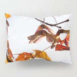 Autumn Sonata I Pillow Sham