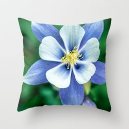 Colorado Columbine // States Flower Close up Purplish Blue Petals White and Yellow Accents Throw Pillow