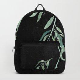Eucalyptus Branches On Chalkboard II Backpack