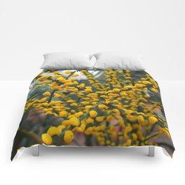 Yell-OW Comforters
