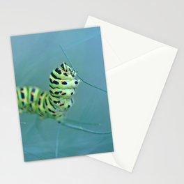 Acrobat Stationery Cards