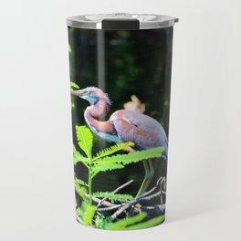 Juvenile Tricolored Heron Travel Mug