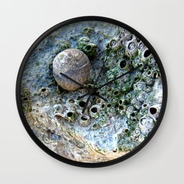 Nacre rock with sea snail Wall Clock