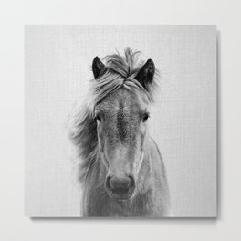 Wild Horse - Black & White Metal Print